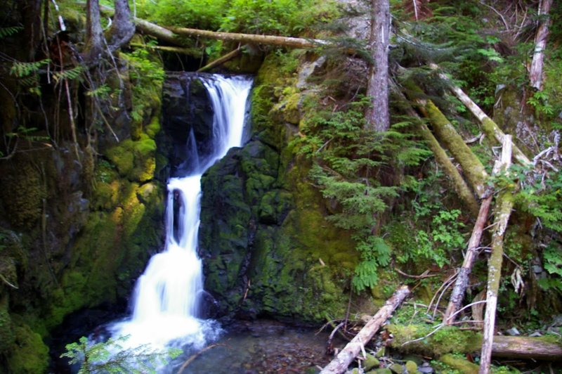 Lost Creek Falls can be seen along a short spur trail off to your left hereon the way up to Burnt Lake.  Photo by Gene Blick.