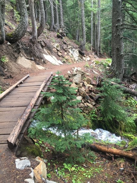 One of the many footbridges on the Glacier Basin Trail.