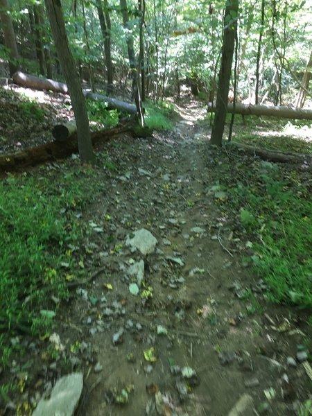 Pretty steep. Be careful.