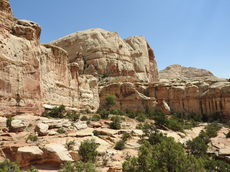 Stunning sandstone in Capitol Reef NP.