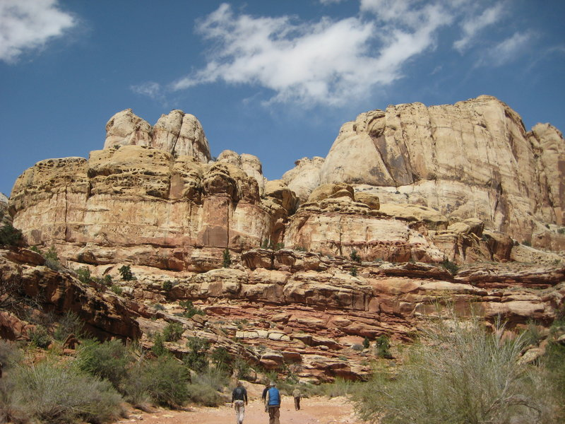 Skyscraping sandstone cliffs usher visitors along the Grand Wash Trail.