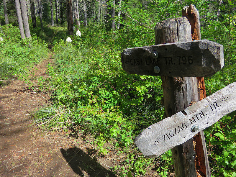 Cast Lake Trail junction with Zigzag Mountain Trail #775.  Photo by Wanderingyuncks.