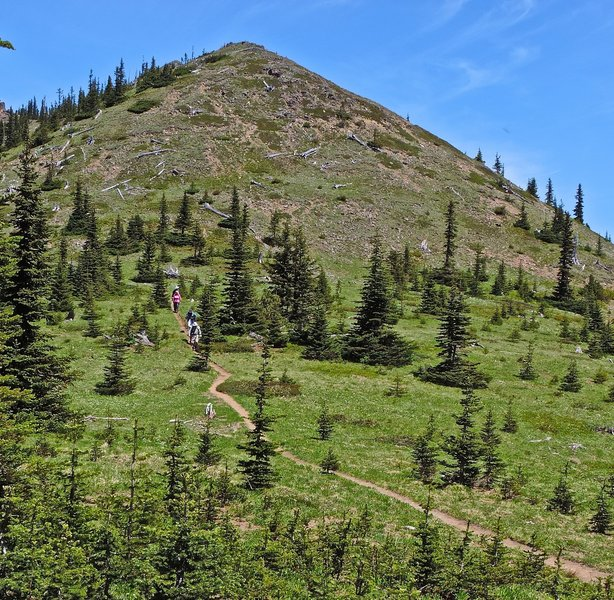 Descending the south side of Noble Knob