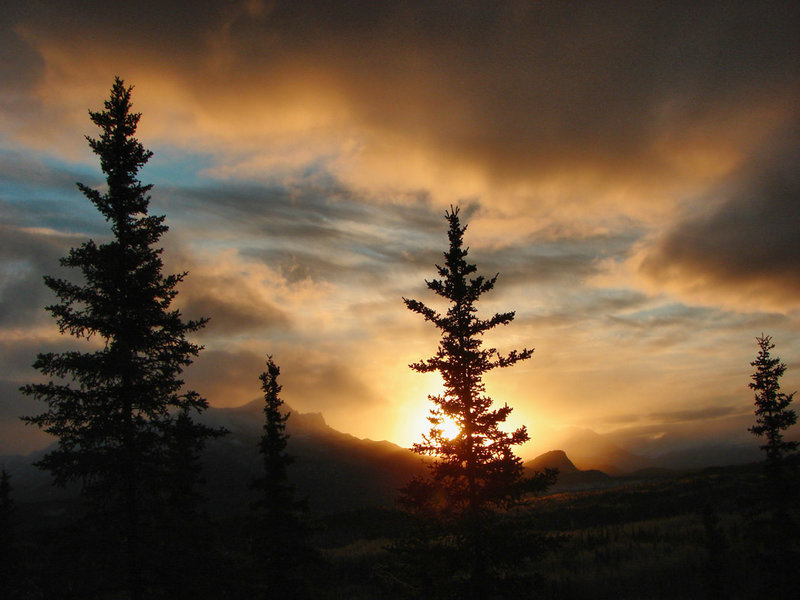 An Alaskan Dawn in Denali National Park. with permission from walkaboutwest *No Commercial Use