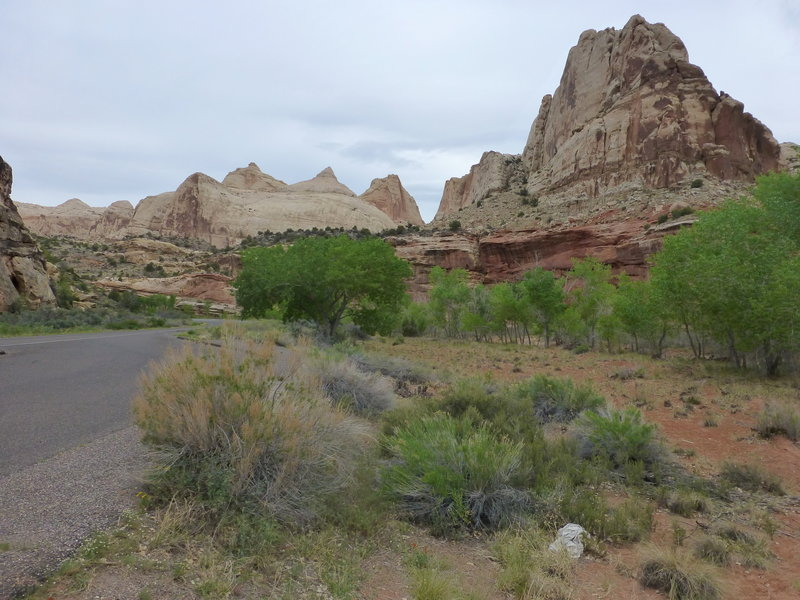 Capitol Dome rising in the background along UT-24 in Capitol Reef National Park, Utah.