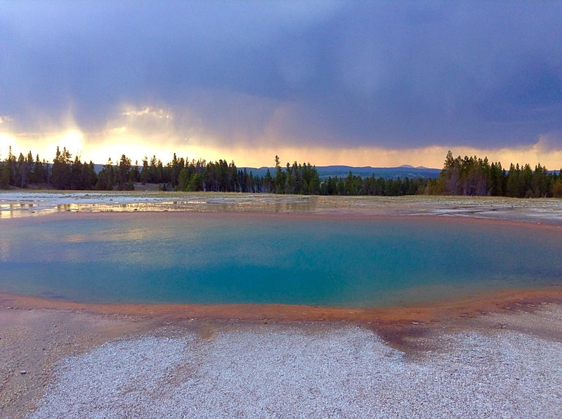 Turquoise Spring