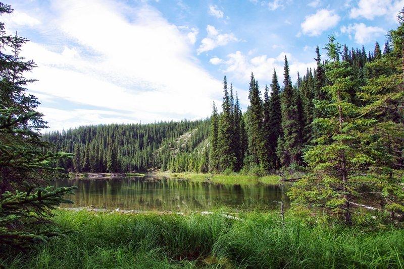 Horseshoe Lake, Denali. with permission from Rumiana Koynova-Tenchova