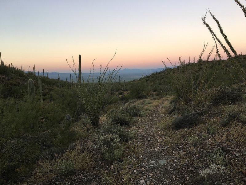 Early morning view from the Gould Mine Trail.