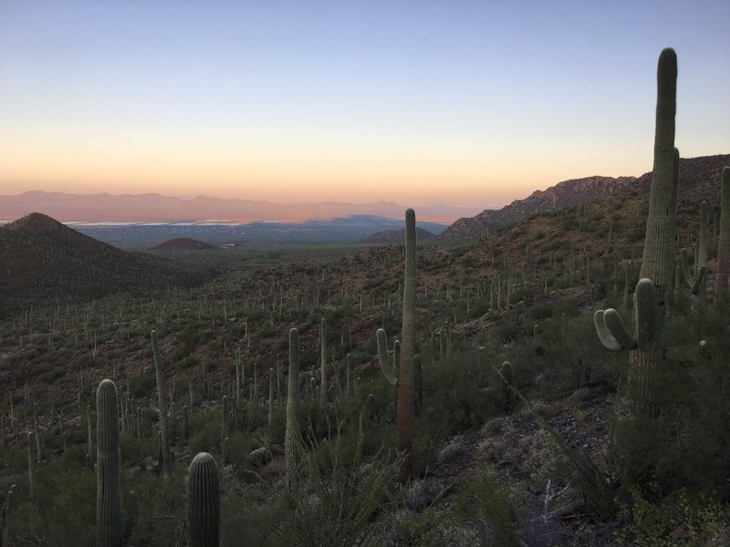 Morning shadows from the Tucson Mountains stretch out over Avra Valley.
