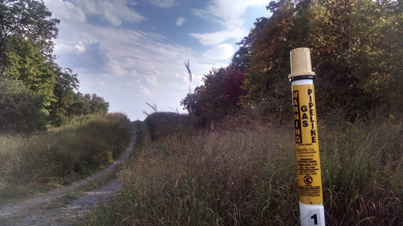 Columbia Gas Pipeline: Appalachian Trail - Fox Gap PA to Columbia Gas Pipeline