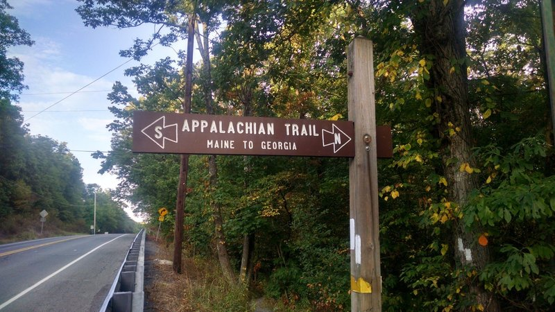 AT Sign (looking north): Appalachian Trail - Fox Gap PA to Columbia Gas Pipeline