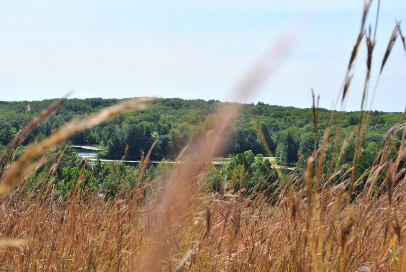 Through the grass - Chippewa Moraine State Recreation Area. with permission from Aaron Carlson