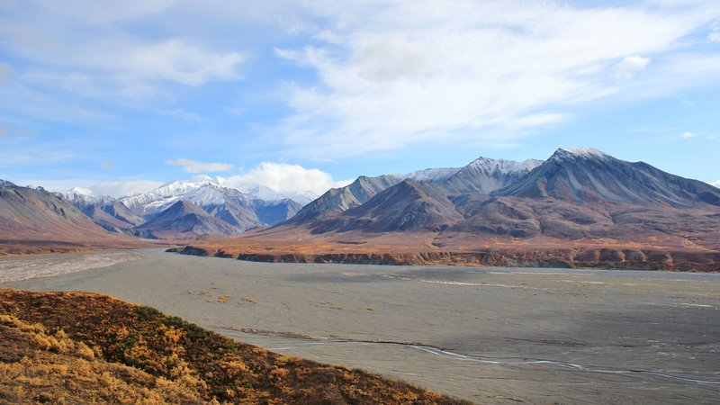 Braided River Vista, Denali National Park. with permission from David Broome