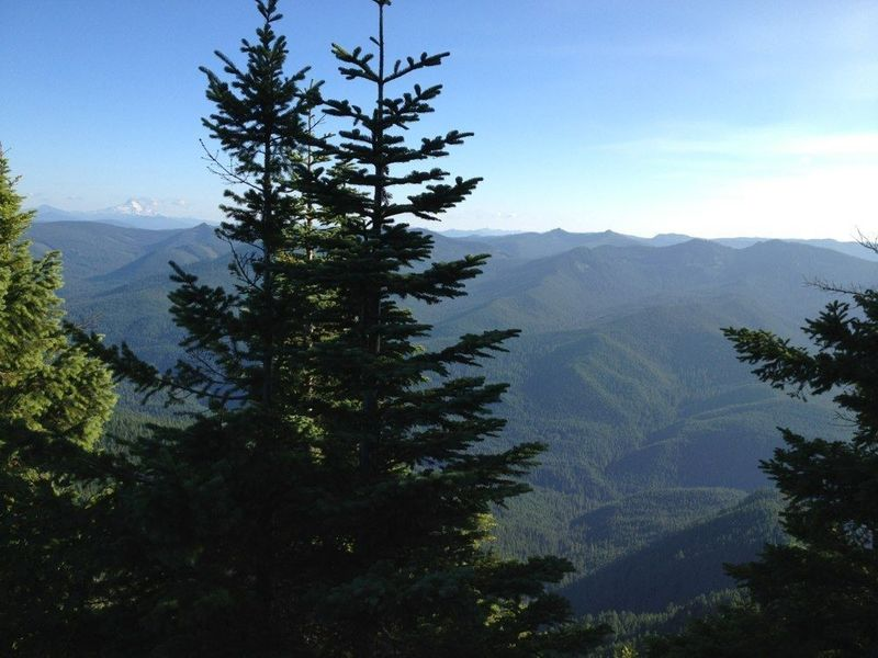 View of Mt. Jefferson and Salmon-Huckleberry Wilderness to the south, from Devil's Peak Lookout.  Photo by Jesse Aszman.