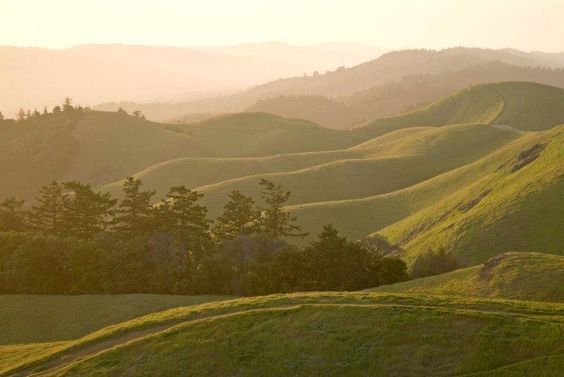 Bolinas Ridge.