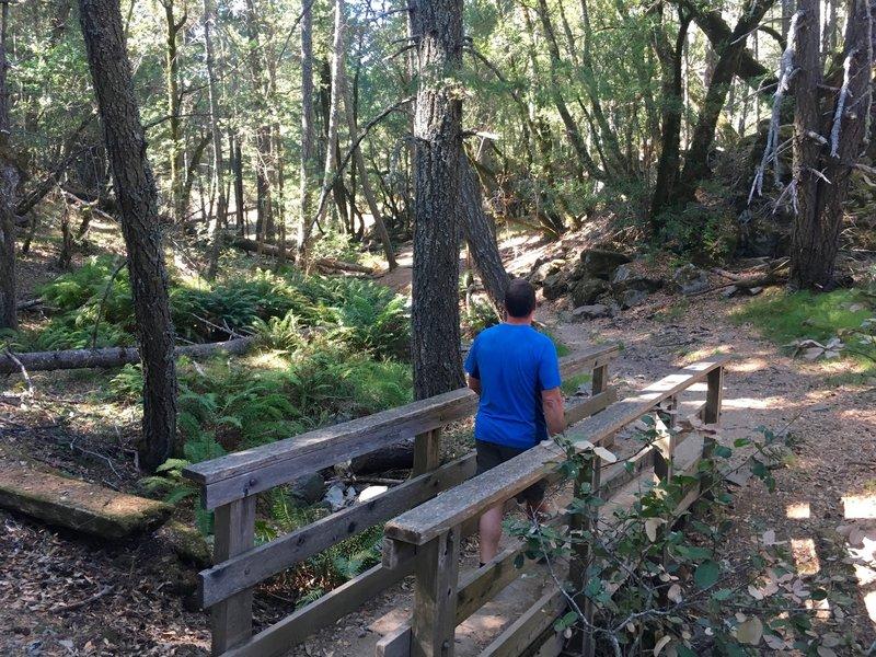 Beginning of the Cataract Trail