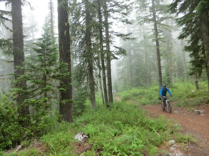 There are mountain bikers on the trail, but wide clearings allow good visibility for hikers and runners.
