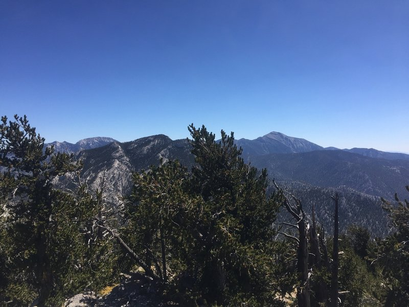 Views of Mt Charleston and the Sprong Mountains from the Peak!