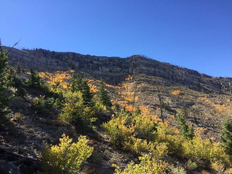 Fall colors on the way up.