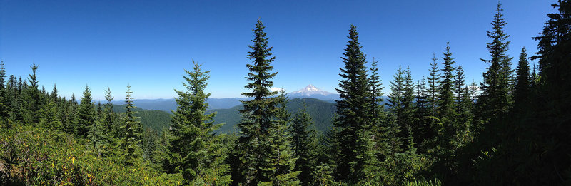 View of Mt. Hood and Mt. Adams from the old lookout at the top of Wildcat Mountain.