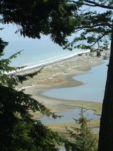 The view down to Dungeness Spit.