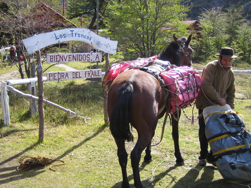 At Piedra del Fraile camp, horses can be used to help ferry in expedition supplies.