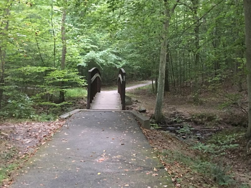 Narrow bridge for stream crossing to south side of South Run. Turn left after crossing bridge to stay on main trail.