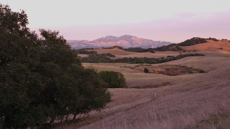 Briones Crest view towards Mt. Diablo.