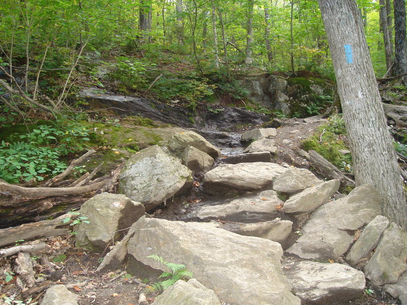 Great stairmaster trail! with permission from irishlazz