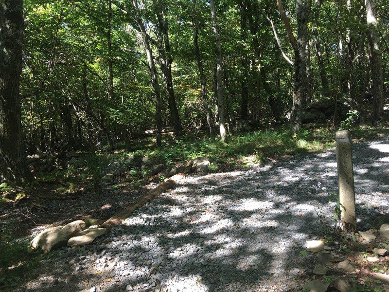 Trail Intersection:  Upper Hawksbill Trail and Hawksbill Fire Road.
