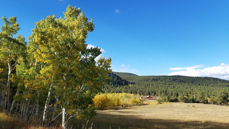 Sweeping meadows and aspens along historic grounds.