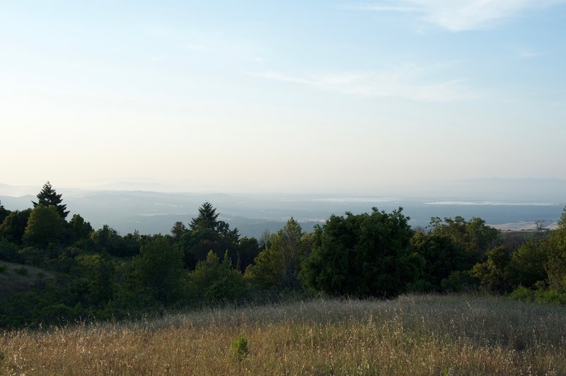 The best view in the preserve allows you to see the San Francisco Bay, cities of the bay area, and the Santa Cruz Mountains.