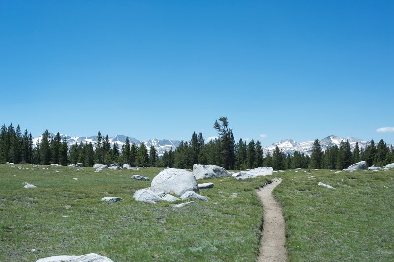 The trail with the Cathedral Range in the distance looking back toward where you came from in the spring time.