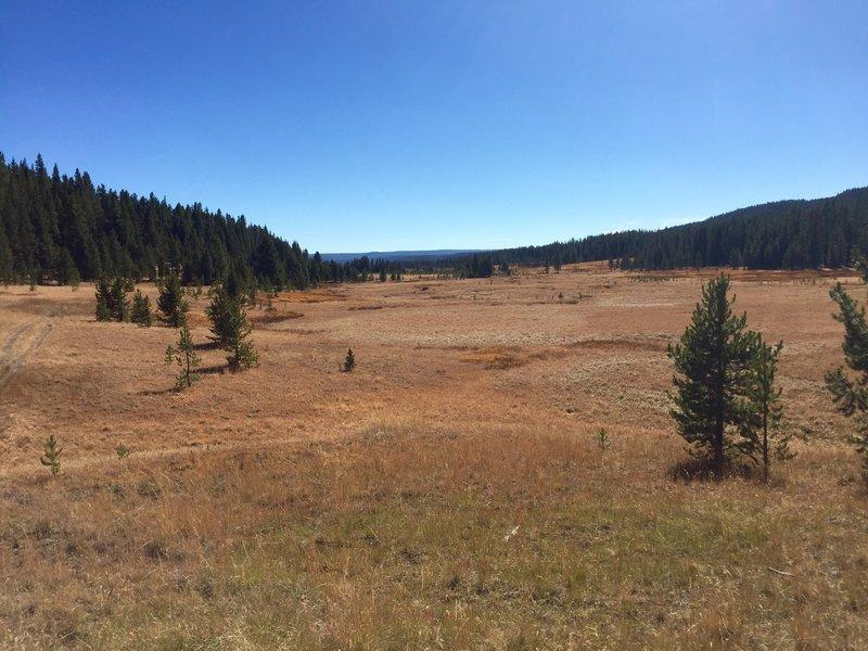 Delacy Creek Trail