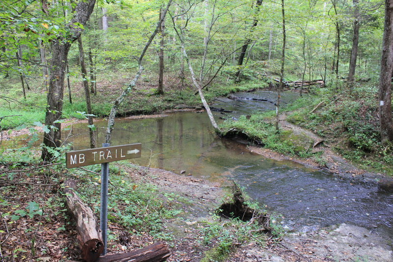 One of the stream crossings by the wildcat shelter.