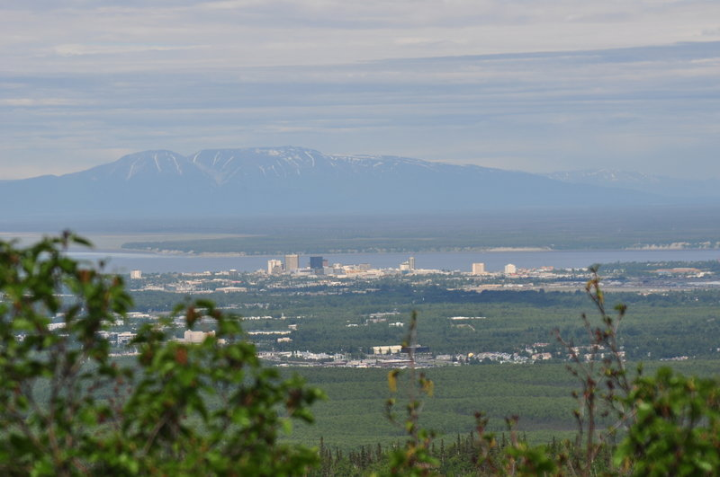 View of Anchorage as we climb above tree line.