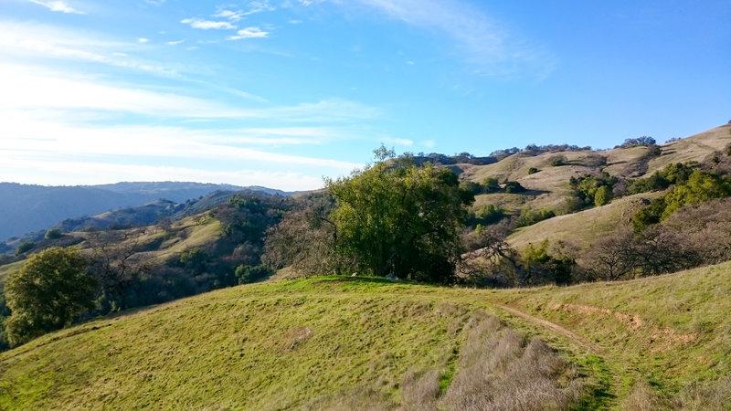 Green hillsides.