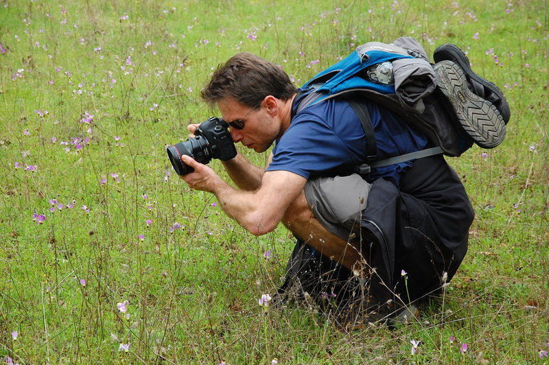 Hiking in Henry Coe State Park offers plenty of opportunities for wildflower photography.