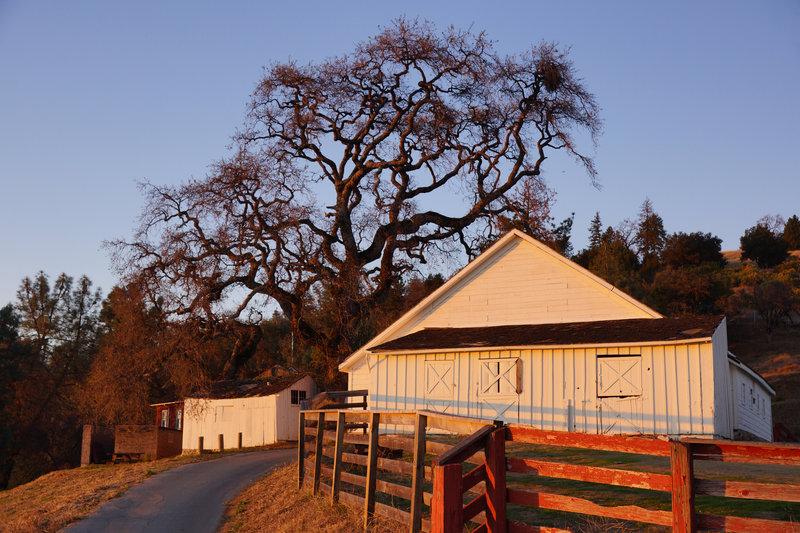 Coe Ranch.