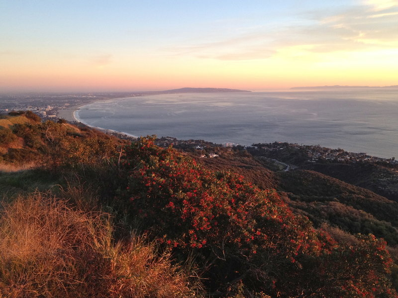 Sunset over the Santa Monica Bay from the East Topanga Fire Road. with permission from laollis