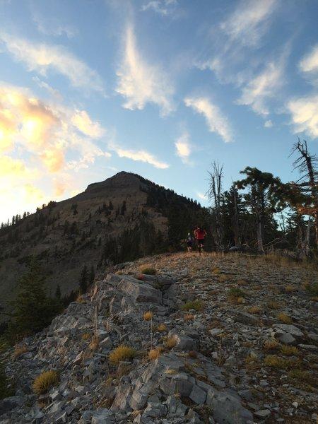 Chasing the summit on the northwest ridge.