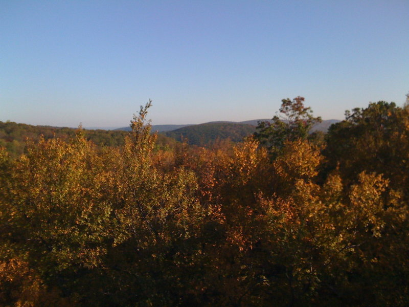 Autumn color from Cat Rock.