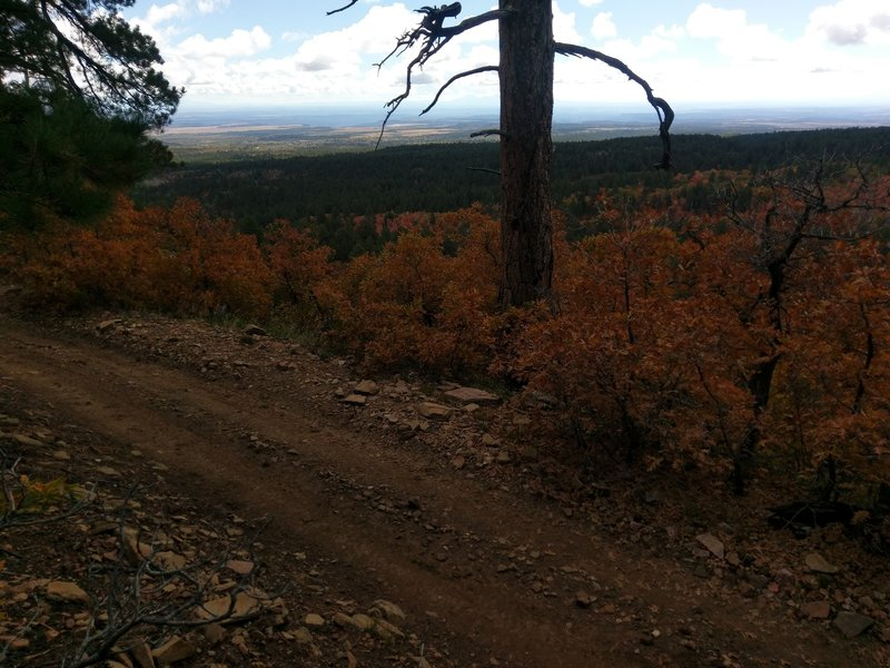 Ambling along the Wagonwheel Trail with views to the east.