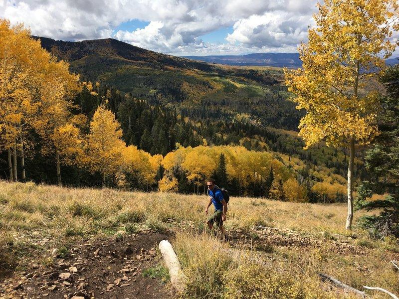 About halfway up Robertson Pasture - incredible views.