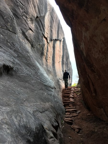 An enormous boulder split in two and left this slot