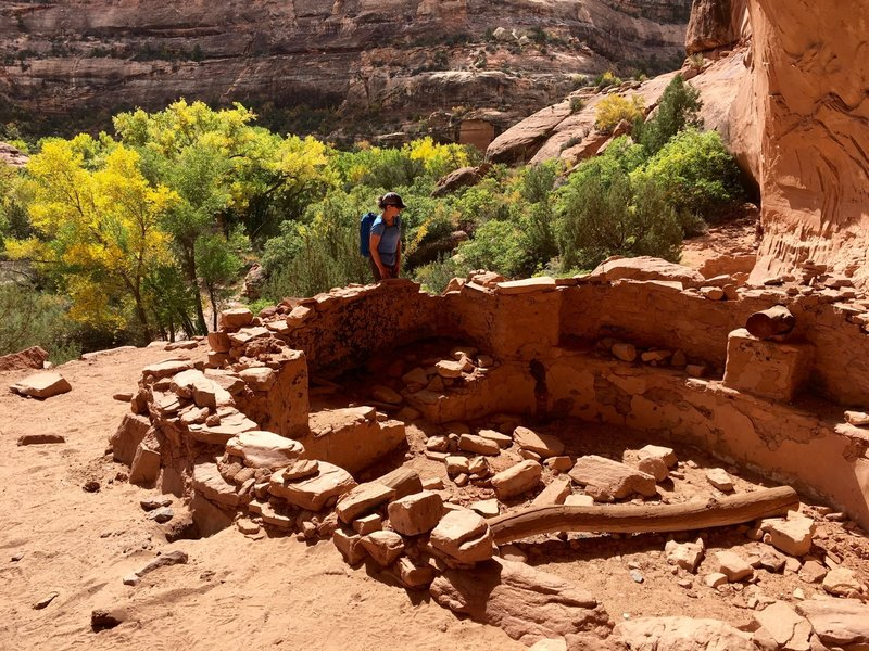 Kiva at the Junction Ruins.