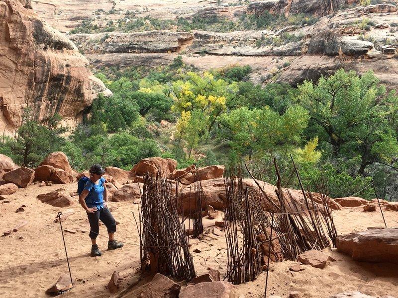 The turkey pen - 1,000 year old sticks still standing!