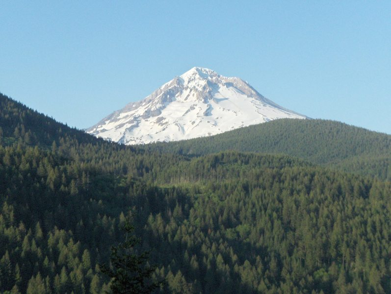 Mt. Hood view from Flag Mountain Trail. Photo by USFS.