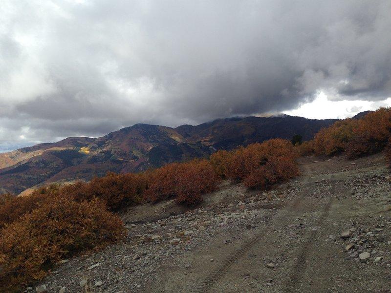 Along the ridge.