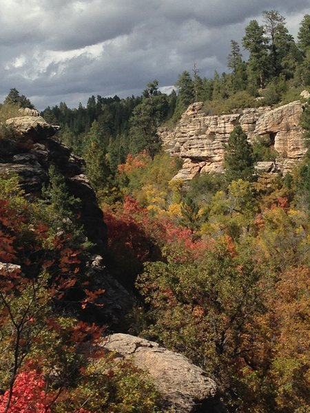 Fall colors in Devils Canyon.
